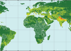 WEB-SEMINAR : Global threats of a silent hazard: land subsidence due to groundwater extraction